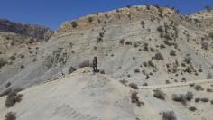 Affioramento di rocce sedimentarie. Monti degli degli Zagros in Iran (foto Jaume Dinarès-Turrel).