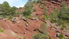Affioramento di rocce sedimantarie nei Pirenei Catalani (Spagna) (foto Jaume Dinarès-Turrel)