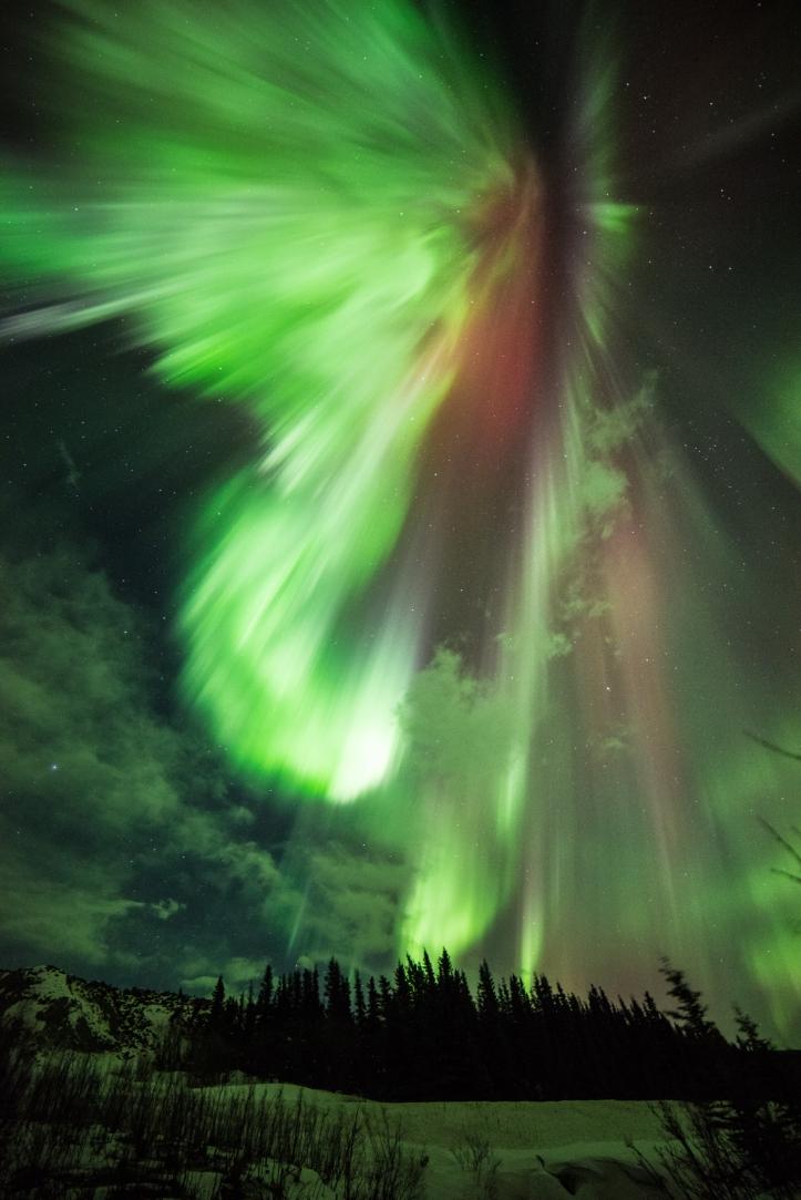 aurora4 NASA