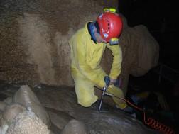 Carotaggio in flowstone (colata stalagmitica), Grotta di Bossea Martino (Frabosa Soprana CN), foto I. Isola