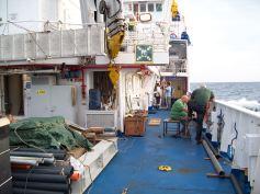 Preparazione dei carotieri a gravità, foto A. Cascella
