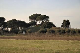 Campagna di misure geofisiche volte alla caratterizzazione di un tumulo sito nell'area archeologica di Gabii, a pochi chilometri dalla città di Roma. Foto di V. Sapia © INGV