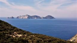 misure geofisiche per la caratterizzazione del sottosuolo nell'area dell'ex discarica di Monte Pagliaro, nell'Isola di Ponza. Foto di V. Sapia © INGV